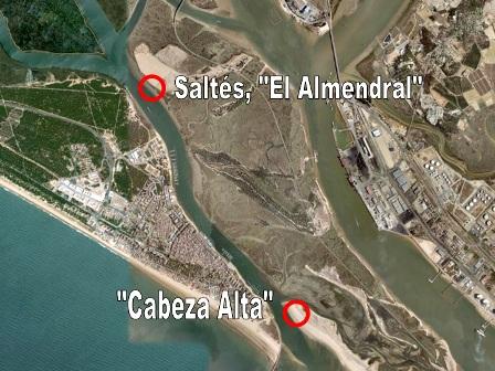 Zonas de la Isla Saltés en las que encontré la basura.