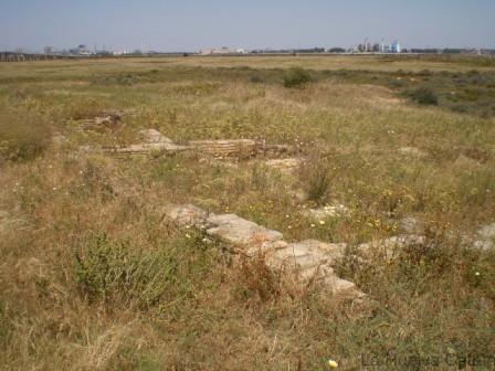 Salthish (2)