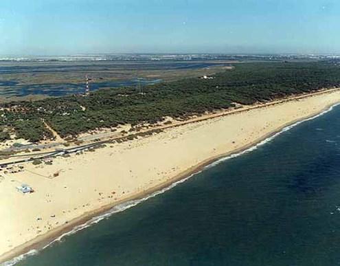 Playa de la Bota en la actualidad