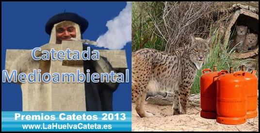 catetada medioambiental 2013