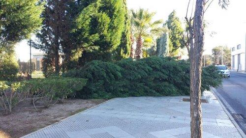 Ciclogénesis Explosiva sobre Huelva (3/6)